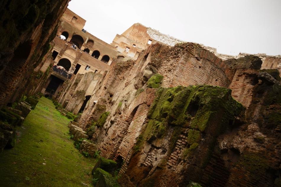 Coliseum14