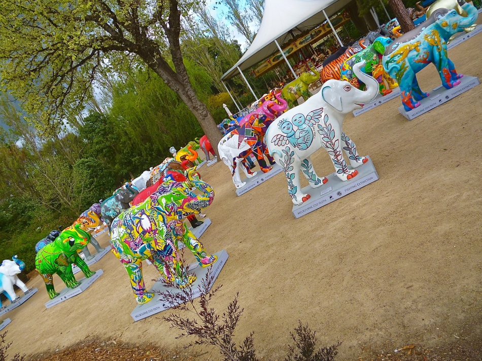 The Royal Melbourne Zoo elephant parade