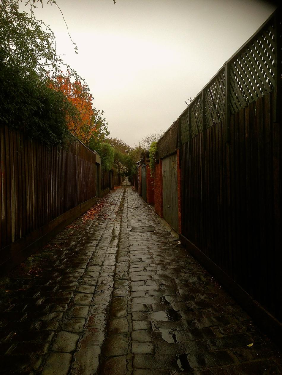 Autumn Rain in Malvern