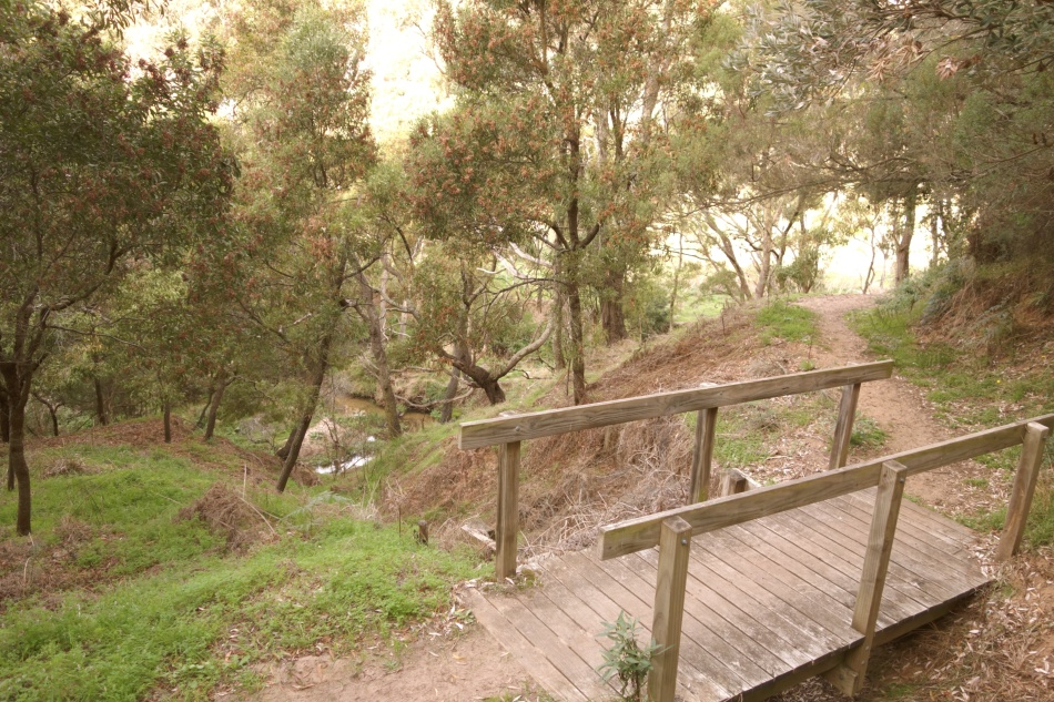 Mornington Peninsula National Park - Bridge