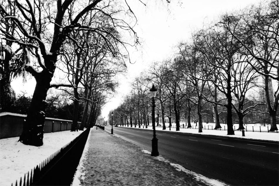 London51