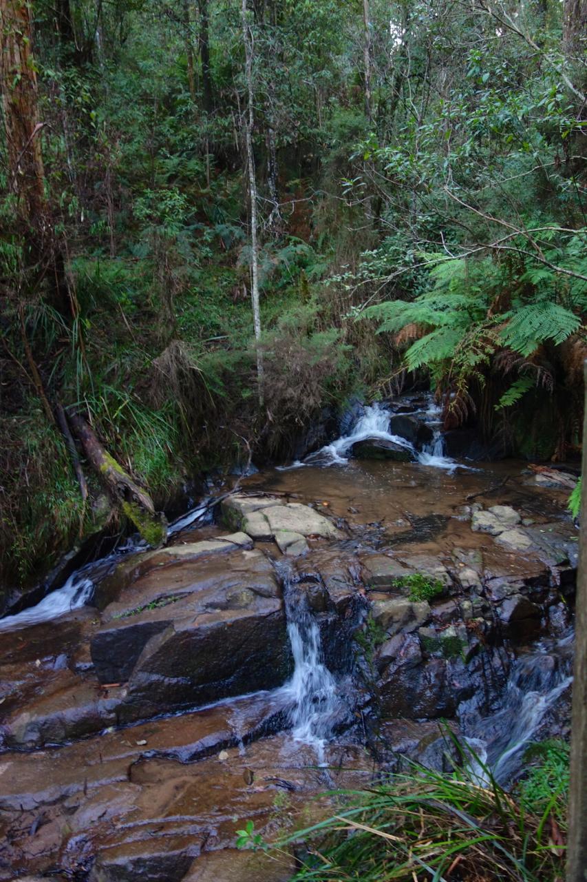 Olinda Falls06