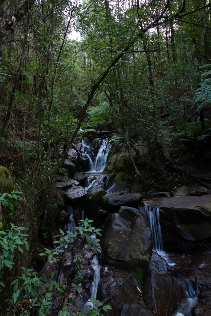 Olinda Falls08