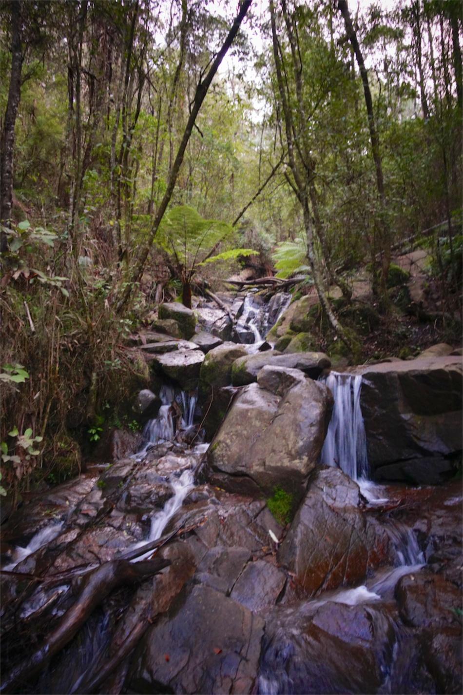 Olinda Falls13
