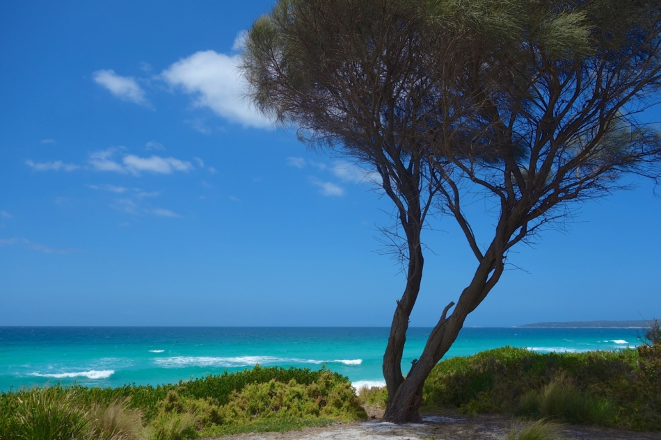 Bay of Fires05