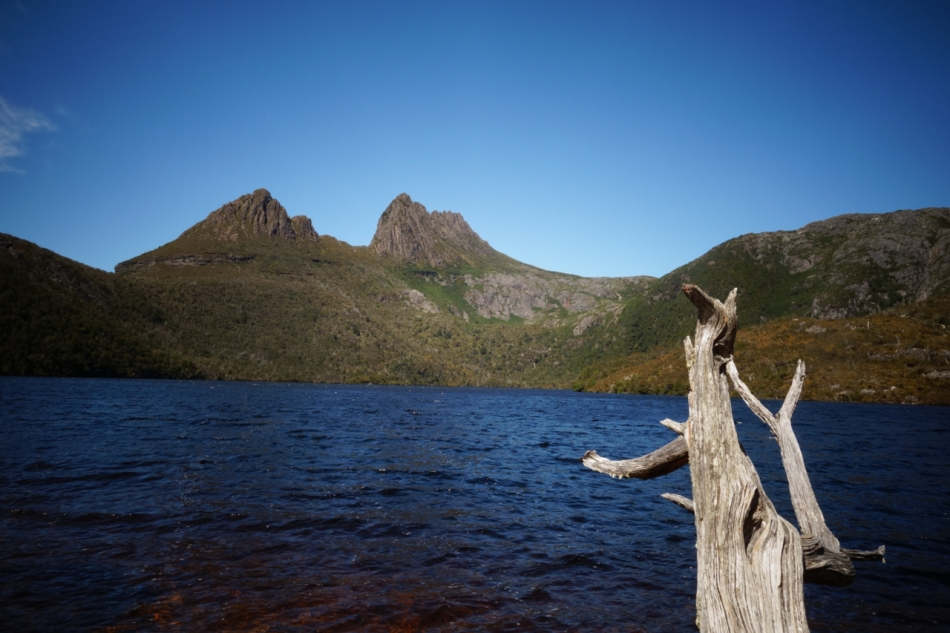 Cradle Mountain01