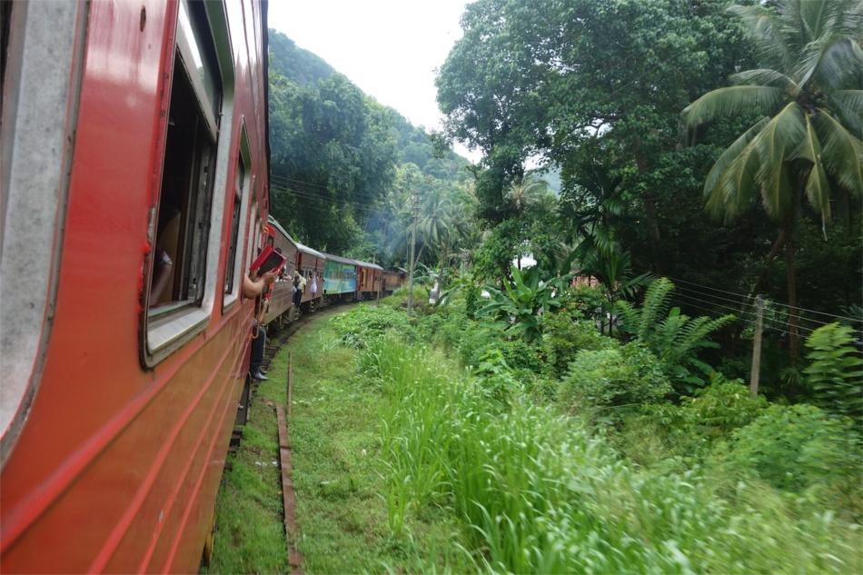 Train Rides07