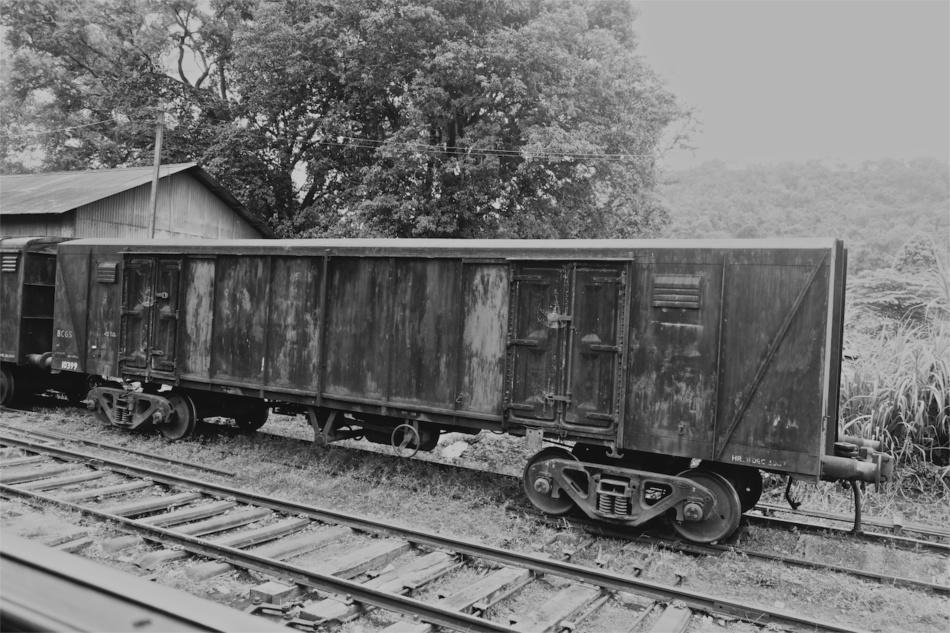 Train Rides09