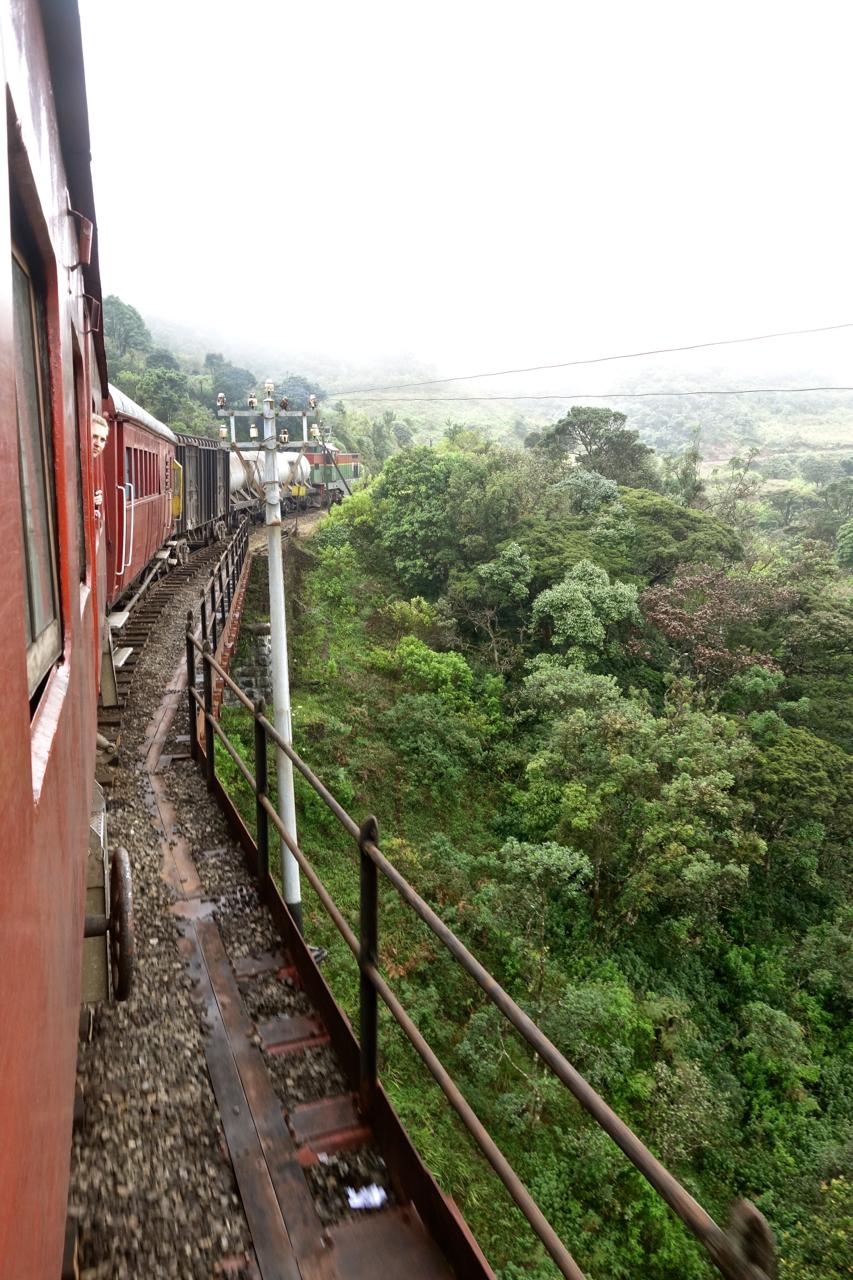 Train Rides15